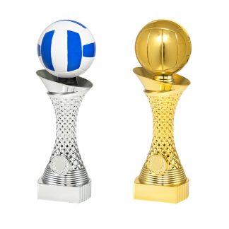 Volleybal sportprijzen